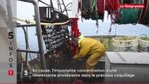 Incendie mortel, contrôle de vélos, charte touristique... Cinq infos bretonnes du 7 novembre