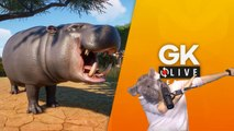 [GK Live replay] Planet Zoo