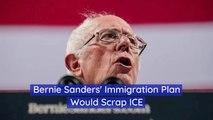 Bernie Sanders' Plan For ICE