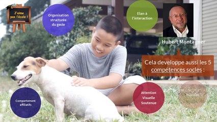 Les animaux : un atout pour le développement des enfants