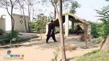 Cobra Sabzi Wala - Funny Video Clip - Chai Wala Vs Sabzi Wala