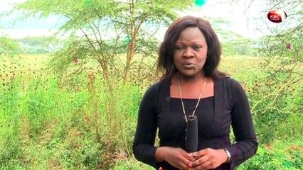 Magical Scenes: Lake Nakuru National Park in Kenya
