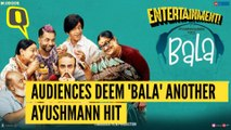 'Bala' Public Review: Ayushmann Is Set to Deliver Another Hit