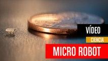 [CH] Micro robots del tamaño de motas de polvo