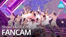 [예능연구소 직캠] HyunA - FLOWER SHOWER, 현아 - LOWER SHOWER @Show!MusicCore 20191109