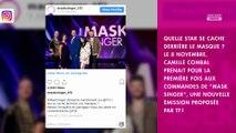 Mask Singer : les internautes conquis par la nouvelle émission de TF1 ?