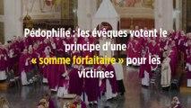 Pédophilie : les évêques votent le principe d'une « somme forfaitaire » pour les victimes