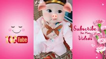 Best Funny TikTok Videos #469 - TikTok meme compilation