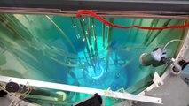 Assistez au démarrage d'un réacteur Nucléaire : impressionnant
