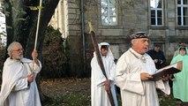 Des druides pour protéger les arbres d'un parc à Lannion