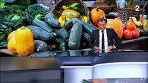 Alimentation : respecter la saisonnalité des légumes