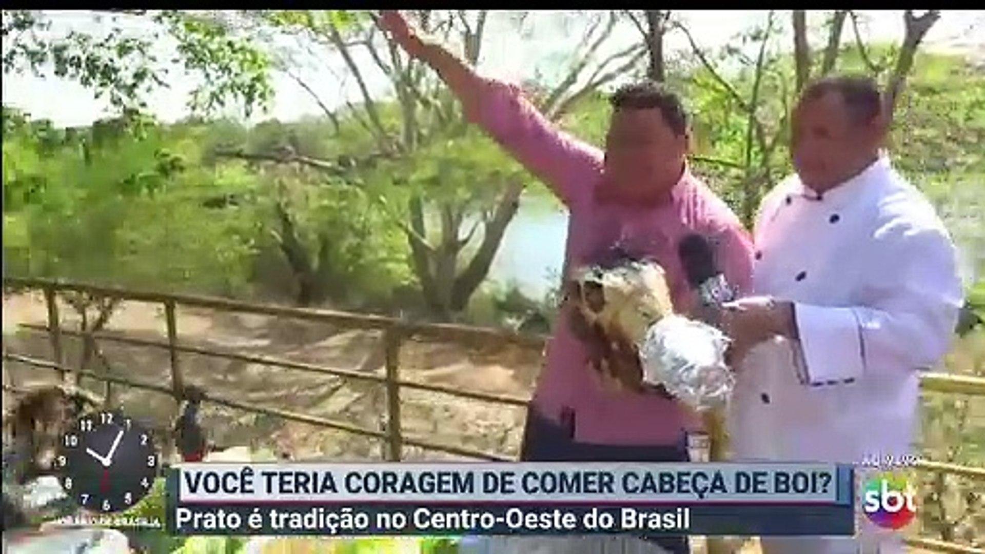 (Trecho) Você teria coragem de comer cabeça de boi? Prato de tradição no Centro-Oeste do Brasil - Pr