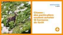 Chasse : des particuliers veulent acheter 10 hectares de forêt