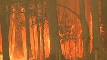 Sydney braces as Australia prepares for 'catastrophic' bushfires