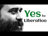 Acharya Prashant on Zen: Liberation is nothing but your 'yes' to Liberation