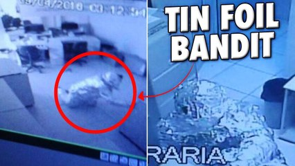 10 Criminal Plans So Ridiculous They Actually Worked