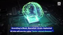 Elon Musk Thinks AI Brain Chips Could 'Solve' Autism and Schizophrenia