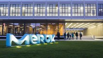 Merck KGaA CFO on M&A Hiatus, Third-Quarter Earnings