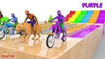 Aprenda colores con Spiderman Rides Street Vehicles and Animals Crossover Tobogán acuático para niños