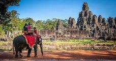 Cambodge : les balades à dos d'éléphants interdites à Angkor dès début 2020