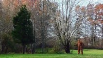 Bigfoot Spotted In Ohio Home Listing