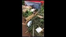 Paranhos se depara com descarte de materiais em lote baldio e pede que população denuncie