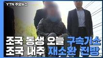 檢, 조국 동생 오늘 구속기소...조국 이번 주 재소환 전망 / YTN