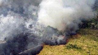 Estudio culpa a la deforestación de los incendios en el Amazonas