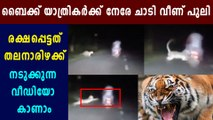 Leopard viral video: leopard jumping towards bike travellers  | Oneindia Malayalam
