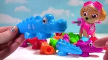 the Alphabet ABC Color   Alligator and Paw Patrols