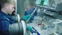 BMW Group Battery Cell Competence Center - Battery cell laboratory