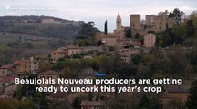 Watch: Beaujolais Nouveau ready for release amid tension over US tariffs