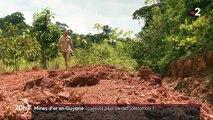 Déforestation: les chercheurs d'or guyanais dans le viseur des militants écologistes