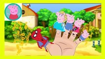 Peppa Pig Eating Lollipop New Episodes With Spiderman VENOM HULK Finger Family Nursery Rhymes Parody