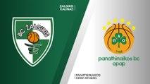Zalgiris Kaunas - Panathinaikos OPAP Athens Highlights   Turkish Airlines EuroLeague, RS Round 9