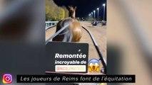Les joueurs de Reims font de l'équitation