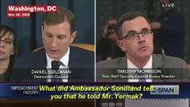 GOP Witness Tim Morrison Confirms Quid Pro Quo At Impeachment Inquiry Testimony