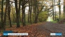 Aisne : une jeune femme tuée par des chiens dans la forêt