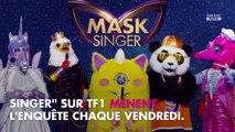 Mask Singer : ces noms de stars qui reviennent le plus souvent