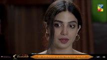 Ishq Zahe Naseeb Episode 24 HUM TV Drama