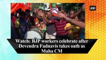 Watch: BJP workers celebrate after Devendra Fadnavis takes oath as Maha CM