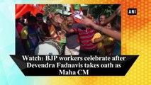 Watch: BJP workers celebrate after Devendra Fadnavis takes oath as Maha CM