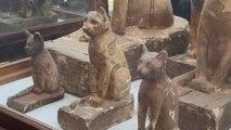 Egipto presenta momias de animales, entre ellas cachorros de león, en Saqqara