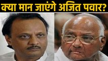 Maharashtra: NCP trying to convince Ajit Pawar, demanding resignation as deputy CM | वनइंडिया हिंदी