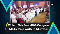 Watch: Shiv Sena-NCP-Congress MLAs take oath in Mumbai