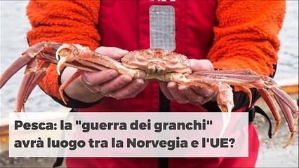 NOVITÀ NOVITÀ DELLA SETTIMANA 26112019