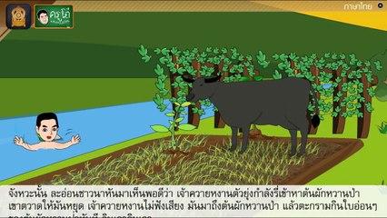 สื่อการเรียนการสอน นิทาน เรื่อง ควายหงานกับผักหวานป่า อื่นๆ อื่นๆ