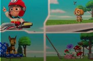 paw patrolSeaso 4   3 – Pups Save a Playful Dragon  Pups Save the Critters Onlne - Paw Patrol