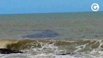 Mancha no mar chama a atenção em Marataízes
