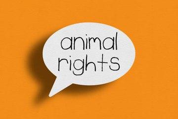 Une police contre la maltraitance animale : un projet Norvégien !